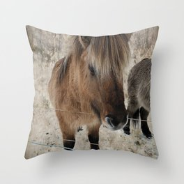 snowy Icelandic horse Throw Pillow