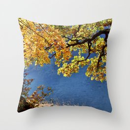 These are the days that must happen to you Throw Pillow