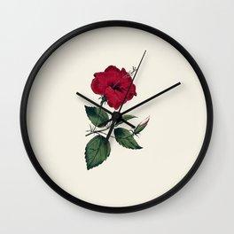 Vintage ivory white red green botanical flower Wall Clock