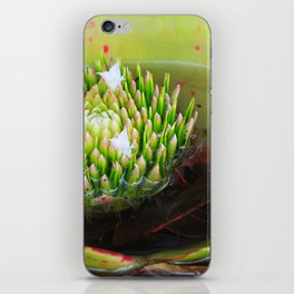 The beautiful Bromeliad iPhone Skin