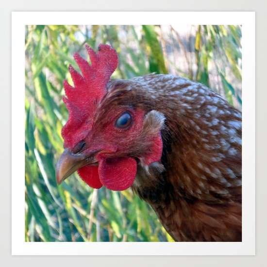 Hey There! Are You Chicken? Art Print