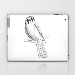 American Kestrel pencil front on Laptop & iPad Skin