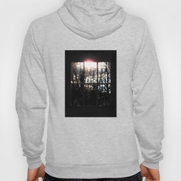 Shadows and Tall Trees Hoody