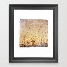sea plants (gold) Framed Art Print