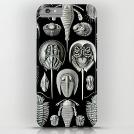 Trilobites and Fossils by Ernst Haeckel iPhone Case