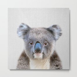 Koala - Colorful Metal Print