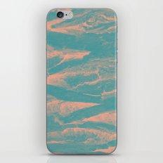 2571 iPhone & iPod Skin
