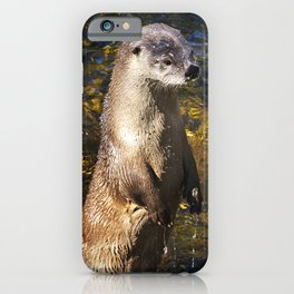 Sea Otter Canvas Print, Photographic Print, Art Print, Framed Print, Greeting Card, iPhone Case, iPhone Case