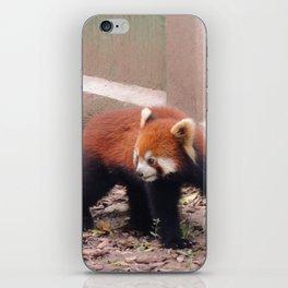 Chongqing Red Panda   Panda roux iPhone Skin