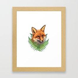 Fern Fox Framed Art Print