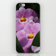 Lilac Orchids iPhone & iPod Skin