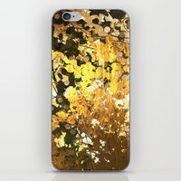 stay gold iPhone & iPod Skins featuring Stay Gold  by eelatham