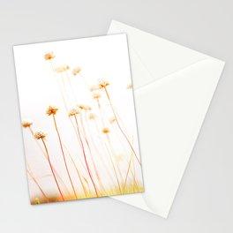 Beach Flora Stationery Cards