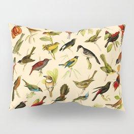 Vintage Birds of Brazil Designs Collection Pillow Sham