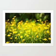 In The Meadow Art Print
