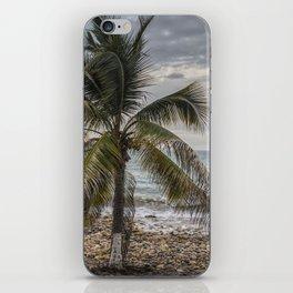 Palm tree & Boat iPhone Skin