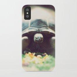 Acinixys Planicauda  iPhone Case