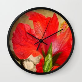 Back Of A Red Hibiscus Flower Against Stone Wall Clock