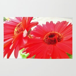 Red Gerbera Daisies WC Rug