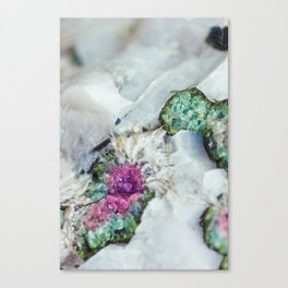 Colorful watermelon tourmaline crystal, macro #society6 Canvas Print