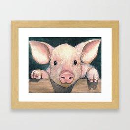 Pig Face Framed Art Print