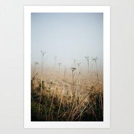 Evanton, VI Art Print