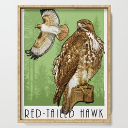 Red-Tailed Hawk Serving Tray