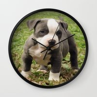 pit bull Wall Clocks featuring Pit Bull Puppy by MandiMccl