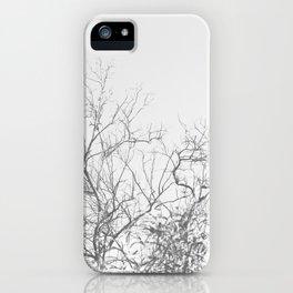 Dark Doom Forest iPhone Case