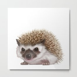 Smiling Hedgehog Metal Print
