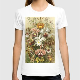 Ernst Haeckel Kunstformen der Nature Orchids T-shirt