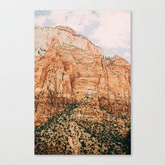 zion national park 3 Canvas Print