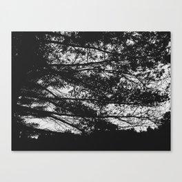 Autumn 3 Canvas Print