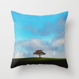 Sliver of Sunshine Throw Pillow