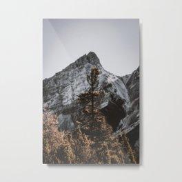Tree Topper Metal Print