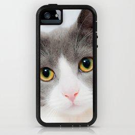 Purrfect iPhone Case