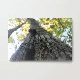 Your Natural Beauty Metal Print