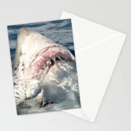White Shark Carcharadon carcharias Stationery Cards