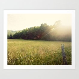 Morning in Cades Cove Art Print
