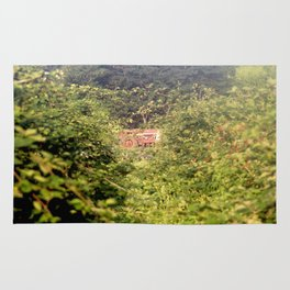 Tracker beyond the Berries Rug