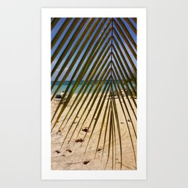 Peeking through the Palms Art Print