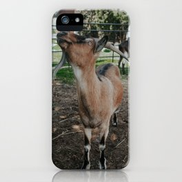 Finnigan iPhone Case