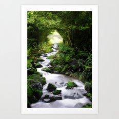 Arden Bridge Art Print