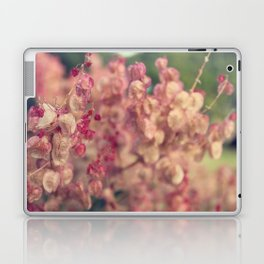 Rumex flower Laptop & iPad Skin