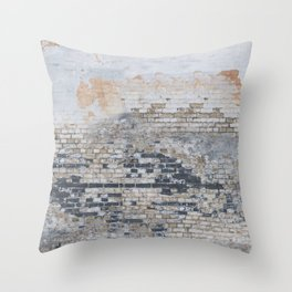 Old Bricks Throw Pillow