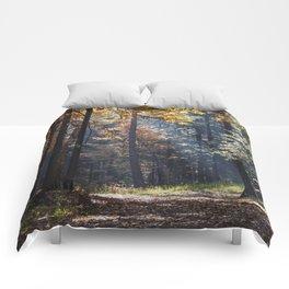 Colorful autumn Comforters