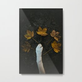 Yellow leafes captured during autumn mood in Germany Metal Print