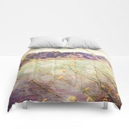 Jenner Comforters