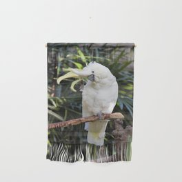 Sulfur-Crested Cockatoo Salutes the Photographer Wall Hanging