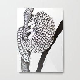 Pangolin! Metal Print